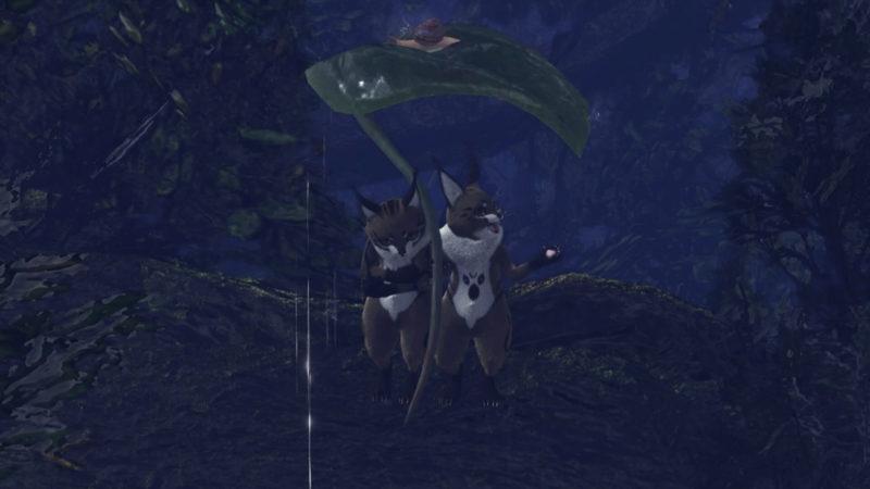 2匹で傘に入るテトルー達の画像です。